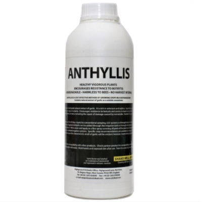 Aston Anthyllis 1L
